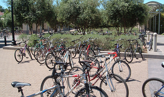 bikes on stanford campus - student housing investment